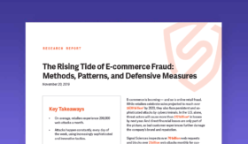 The Rising Tide Of E-commerce Fraud: Methods, Patterns, And Defensive Measures